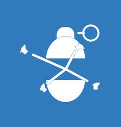 Icon military grenade blast vector