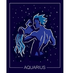 Zodiac sign aquarius on night starry sky vector