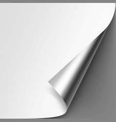 curled metalic corner of paper on gray background vector image