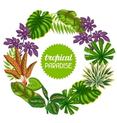Frame with tropical plants and leaves image for vector