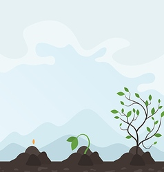 Growth of a plant2 vector image vector image