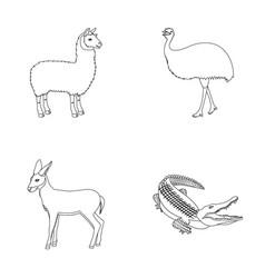 Lama ostrich emu young antelope animal vector