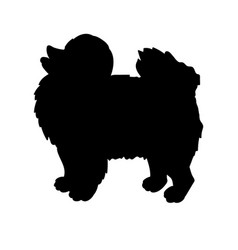 silhouette of spitz isolated on white background vector image vector image