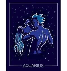 Zodiac sign Aquarius on night starry sky vector image vector image