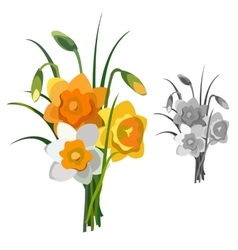 Bouquet of yellow and white flowers isolated vector