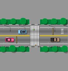 Pedestrian crossing with speed bump vector