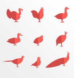 Farm bird flat icons vector