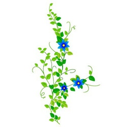 Branch with flowers vector image vector image