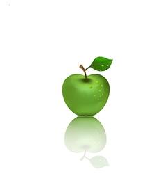 Green apple on white background vector