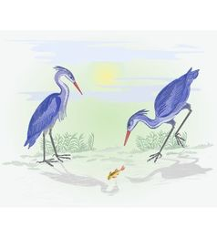 Herons water birds hunting fish vector