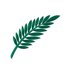 tropical tree leaf vector image vector image