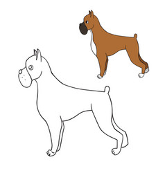 Cute cartoon contour boxer isolated on white vector
