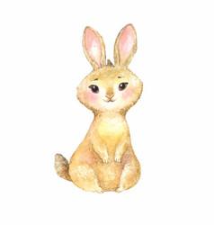 cute brown rabbit vector image vector image