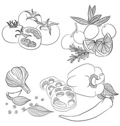 line art various vegetables vector image