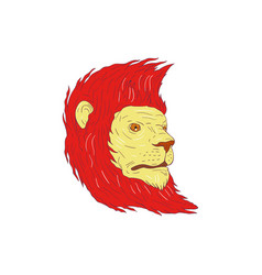 Lion head with flowing mane drawing vector