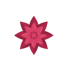 pink flower decoration image vector image