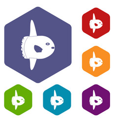 small fish icons set hexagon vector image vector image