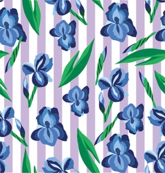 Floral pattern with irises on the stripe vector