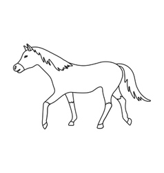Horse icon in outline style isolated on white vector