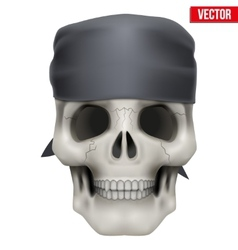 Human skull with bandana on head vector image