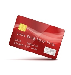 Red Credit Card vector image