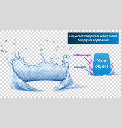 water two layered crown splash of water vector image vector image