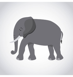Elephant silhouette asian icon vector