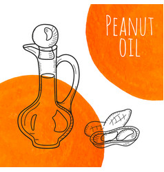 Hand drawn peanut oil bottle with orange vector