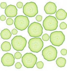 Cucumber slices vector