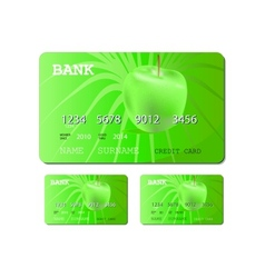 credit or debit green card vector image vector image