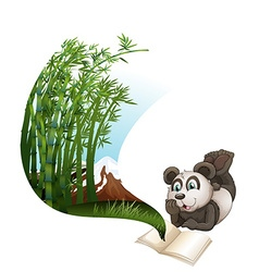 Panda reading book about bamboo vector