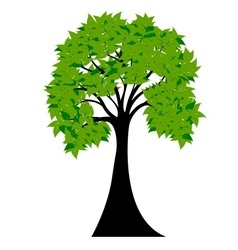 Decorative green tree silhouette with green leaves vector