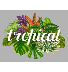 Background with stylized tropical plants and vector