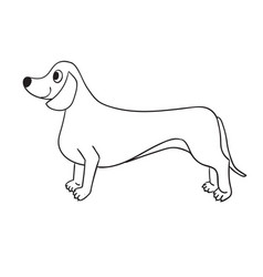 cute contour dachshund isolated on white vector image