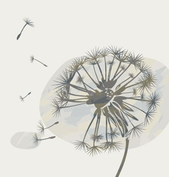 dandelion on a cloud vector image