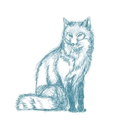 fox sitting sketch blue vintage vector image vector image