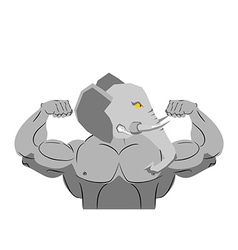 Strong angry elephant aggressive Evil beast vector image vector image