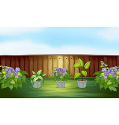 Plants in the backyard vector