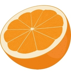 Orange cut in half citrus isolated on white vector
