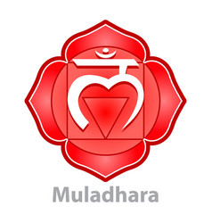 Chakra muladhara isolated on white vector