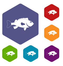 Sea bass fish icons set hexagon vector