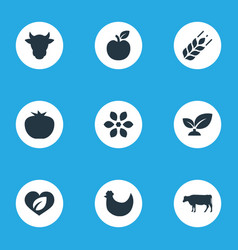 Set of simple icons elements dairy vegetables vector