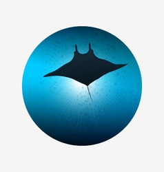 Big manta ray in ocean water underwater life vector