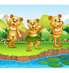Lions dancing by the river vector image