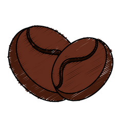 coffee grains isolated icon vector image vector image