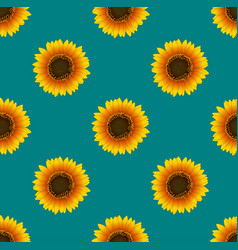 Sunflower seamless on green teal background vector