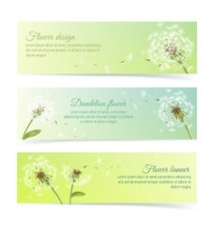 Collection of banners and ribbons with dandelion vector image