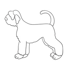 Giant schnauzer contour isolated on white vector