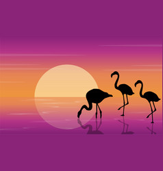 On lake scenery with flamingo silhouettes vector