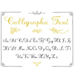 Alphabet letters hand drawn calligraphy font vector image